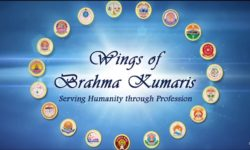 wings of brahmakumaris
